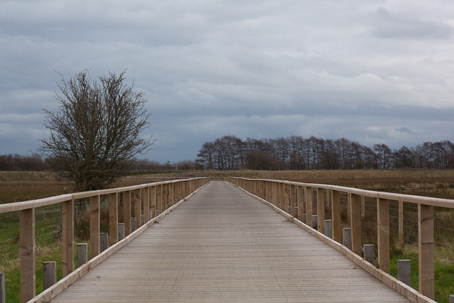 Cycle path, Burton Marshes