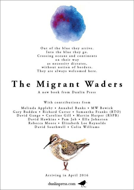 Migrant Waders poster