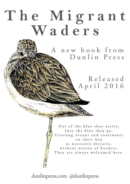'The Migrant Waders' poster 3