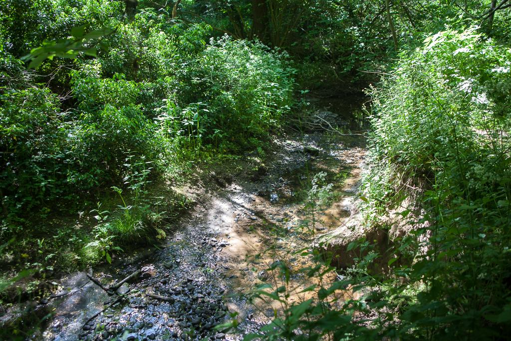 River Dibbin