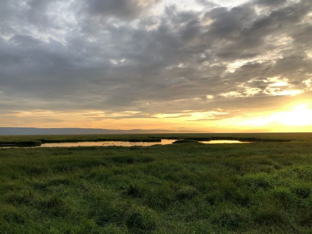 Dee Marshes, Parkgate, sunset