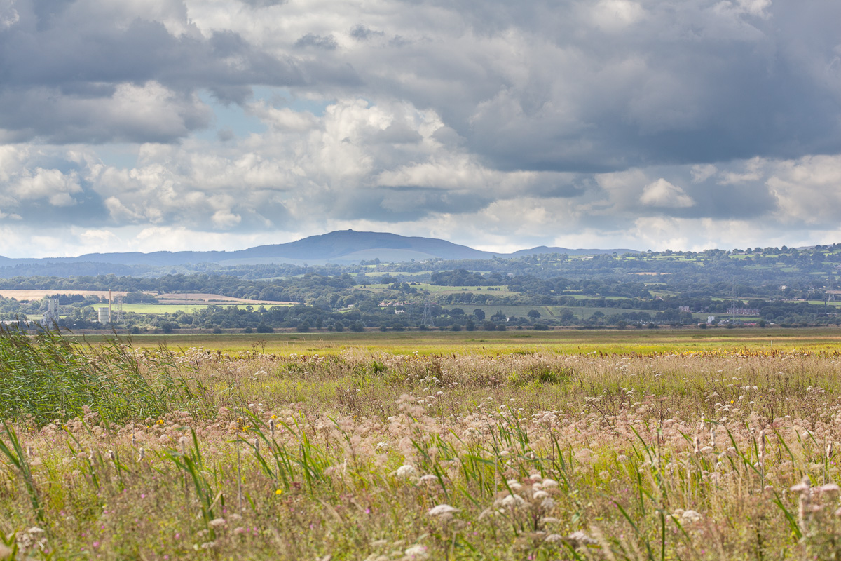 Moel Famau from Burton Marshes