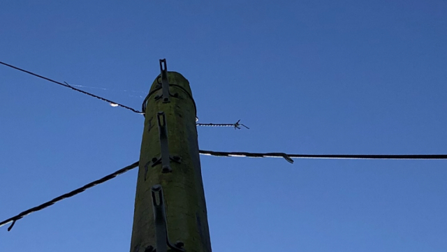 Buggered telephone line.