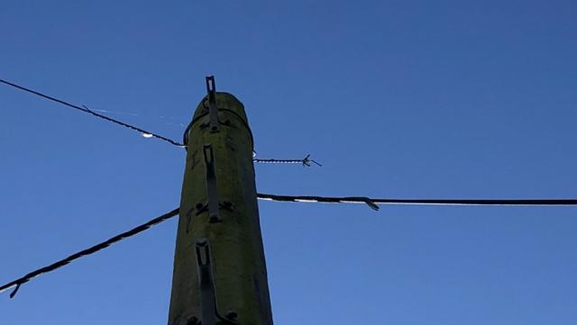 Buggered telephone line.