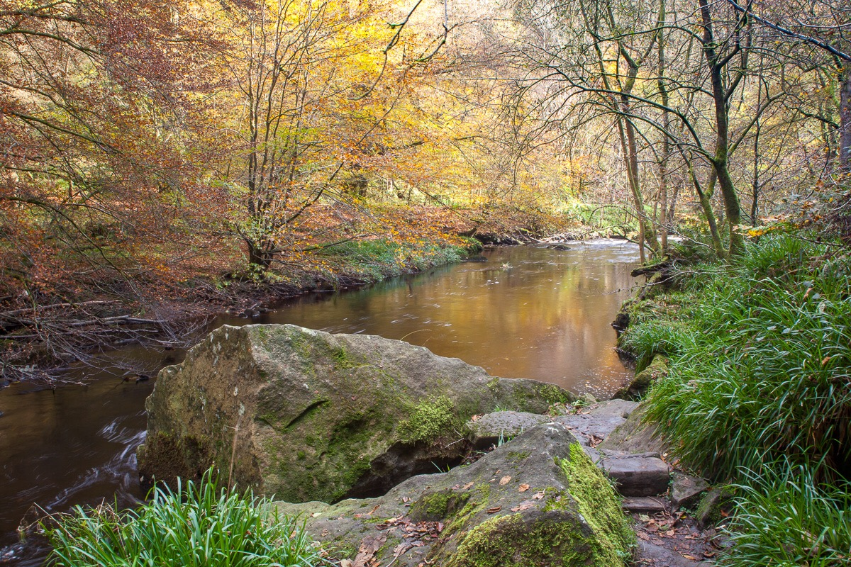 Hardcastle Crags, Autumn