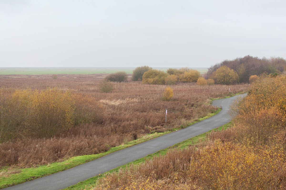Autumn, Burton Marshes