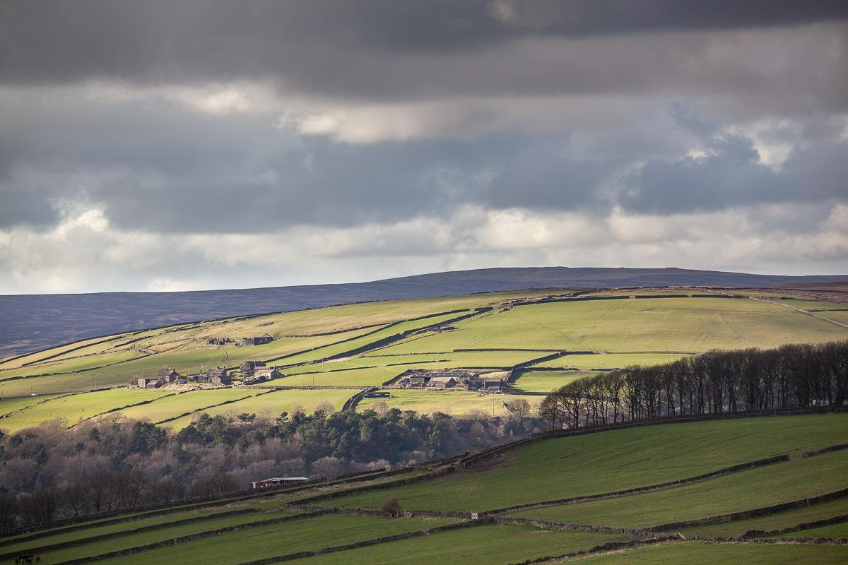Upper Calder Valley hillside