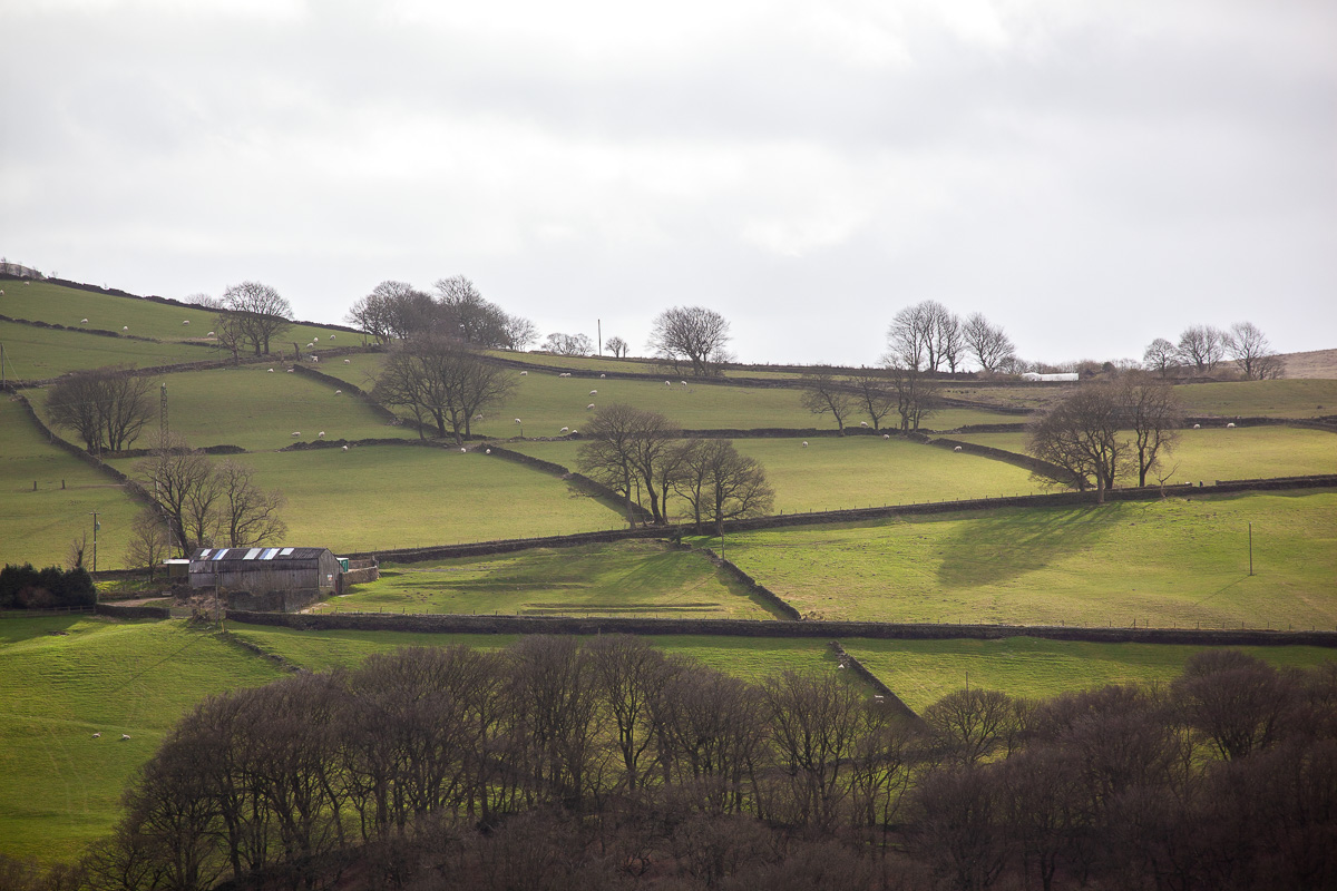 Upper Calder Valley hillside