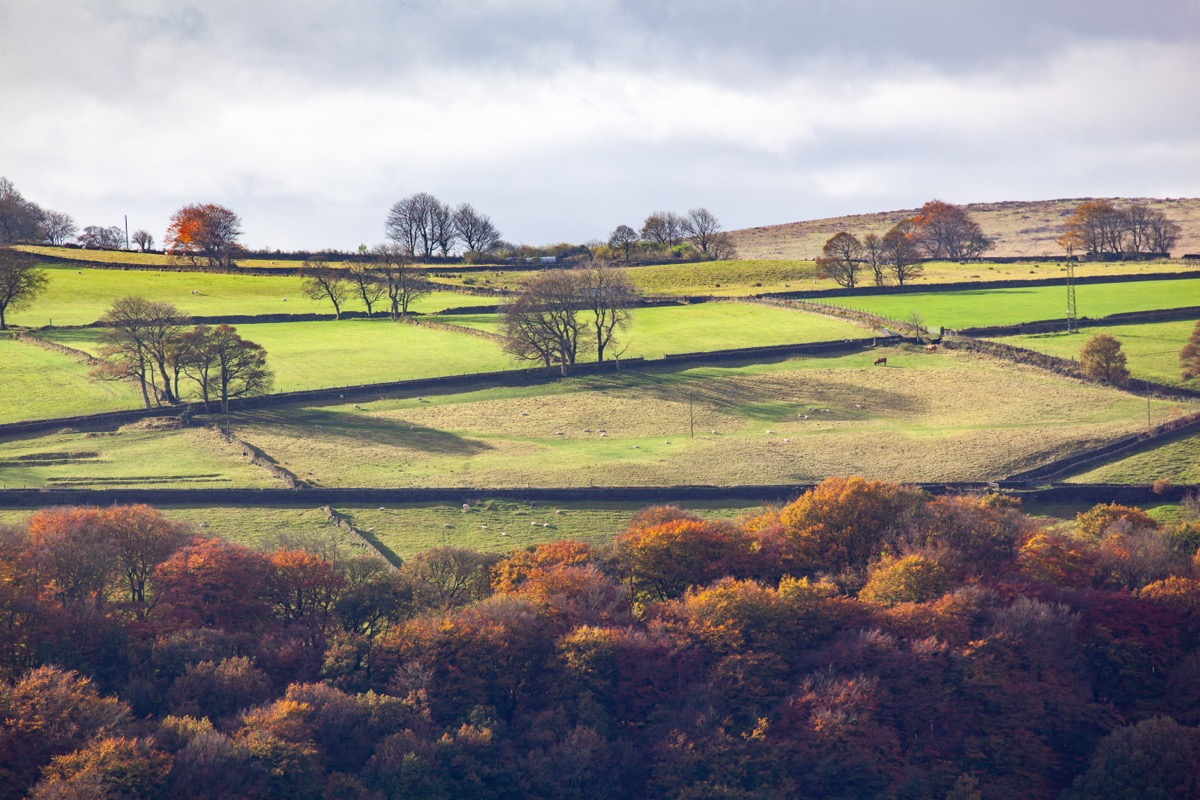Autumn in the upper Calder Valley