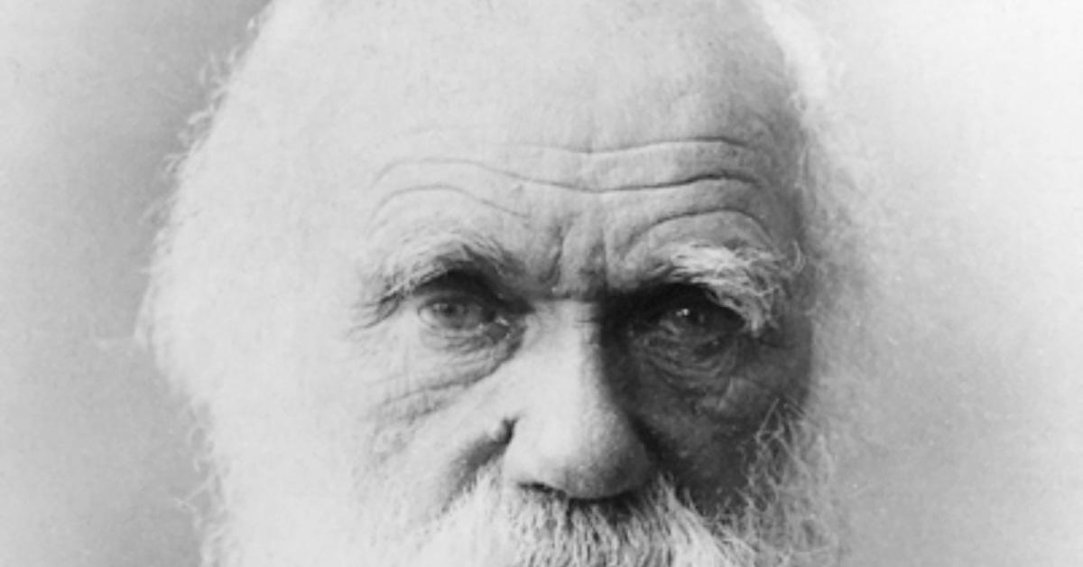 Darwin's eyes