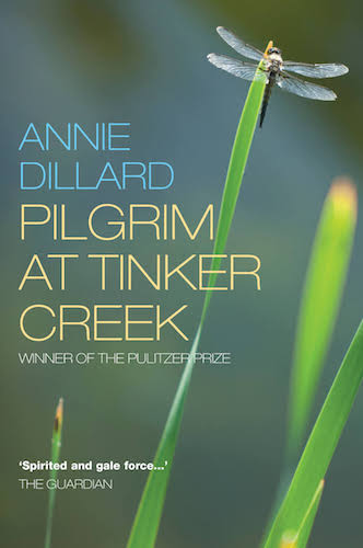 Dillard Pilgrim