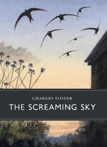 'The Screaming Sky' by Charles Foster
